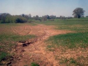 Soil_erosion_at_Hill_Farm_-_geograph.org.uk_-_1287527