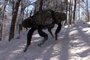 The Big Dog Drone (Boston Dynamics)