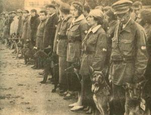 Soviet Military Dog Training School, 1931 (Wikipedia)