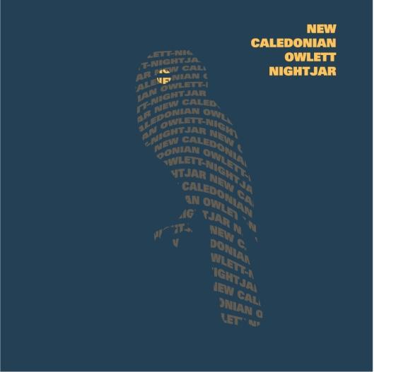 New Caledonian Night-Jar