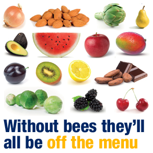 without_bees_they'd_all_be_off_the_menu