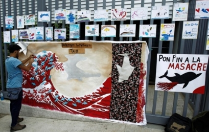 An activist fastens his signature written on dolphin-shaped origami on a banner, in protest against the annual slaughter of dolphins in the fishing village of Taiji in Japan, in front of the Japanese embassy in San Jose August 31, 2012. REUTERS/Juan Carlos Ulate