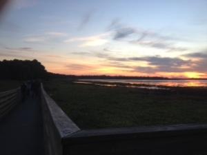 Sunset at Myakka. Photo by me
