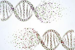 7-interesantes-curiosidades-sobre-el-mundo-de-la-genetica-1