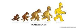 evolutionnn