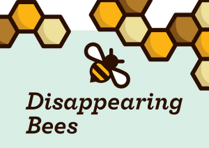 Disappearing-Bees-Infographic
