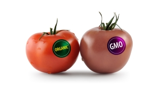 genetically-modified-food1