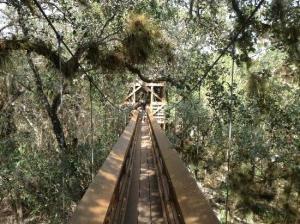 myakka-river-state-park