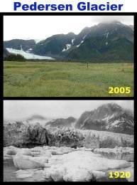 Pedersen_Glacier