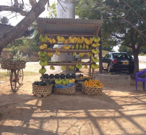 fresh fruit stand Tanzania
